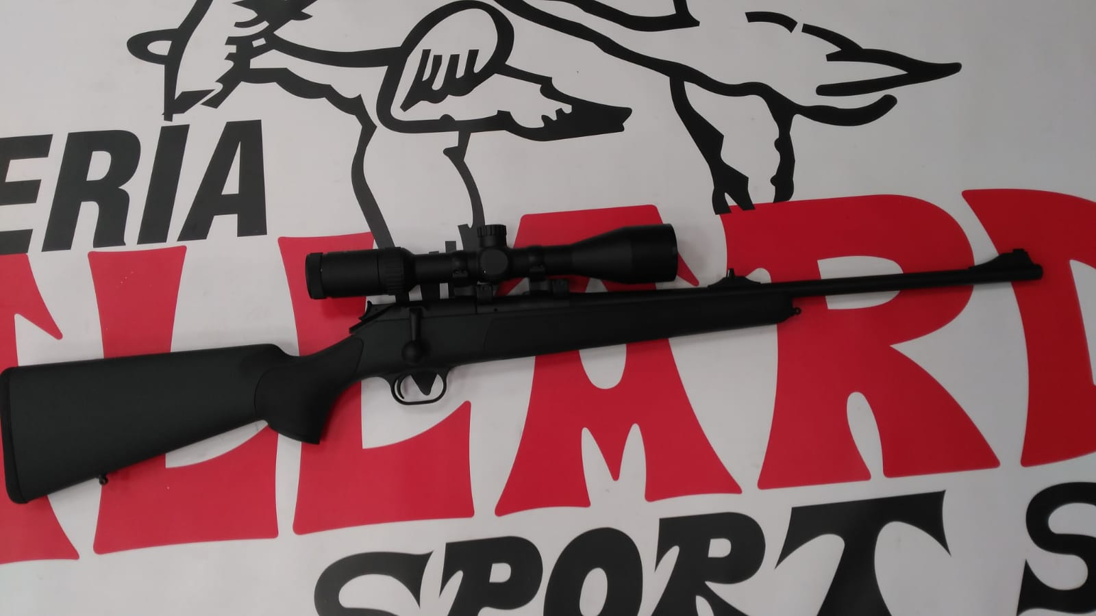 BLASER R93 PROFESIONAL VERDE 30-06 IMPECABLE